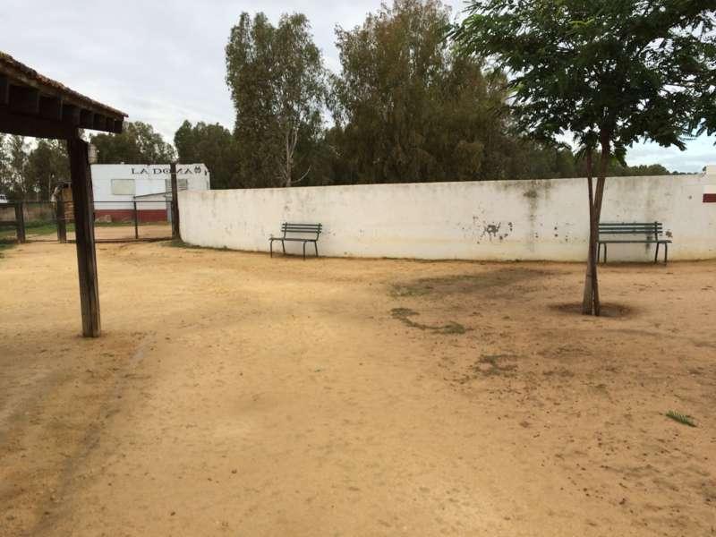 Capea en Sevilla 4
